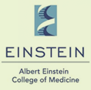 Albert Einstein College of Medicine | Doctor Vahdat